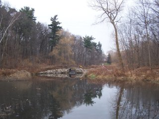 (stormwater pond)
